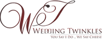 Wedding Twinkles Logo